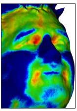 Systém Guardia umí i infračervený snímek