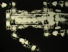 Rentgenový snímek robopsa Aibo