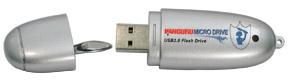 KANGURU Solutions  2GB