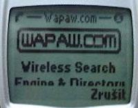 Nokia 6210 - displej - WAP