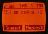 Siemens C55